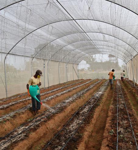 Kheyti – Small Farmer   Smart Farmer